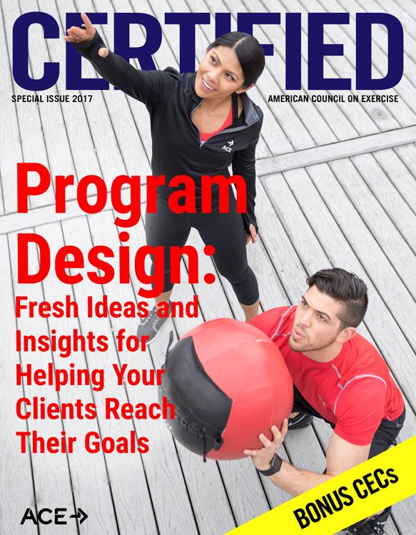 Program Design Special Issue 2017