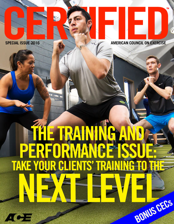 Training and Performance Special Issue 2016