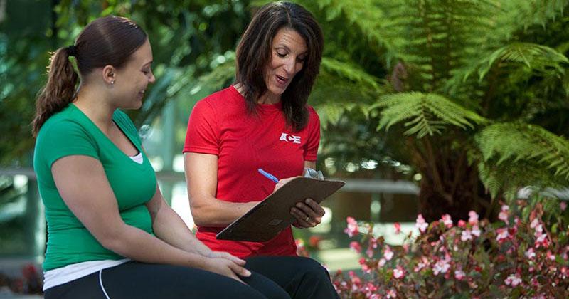 Practical Application of the ACE IFT Model | Makeba Edwards | Exam Preparation Blog | 5/23/2014